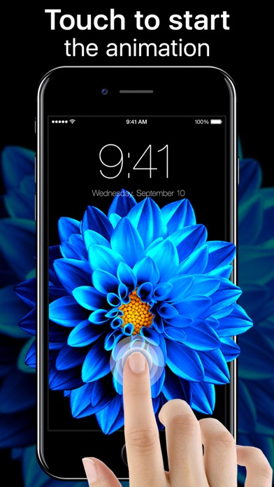 download Live Wallpapers Now apps 4