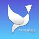 Pocketbible