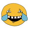 Hao Nguyen - American Style Comics Emoji  artwork