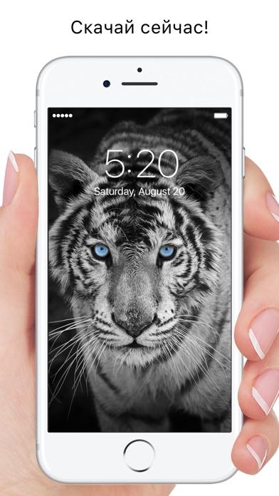 Everpix - Красивые HD обои Скриншоты7