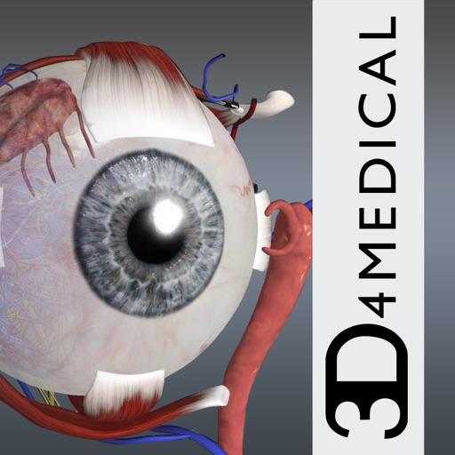 眼部科学:Eye – Practical Series