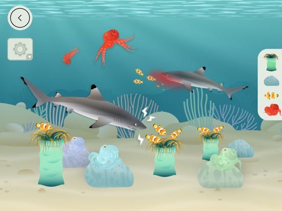 Coral Reef by Tinybop Screenshots