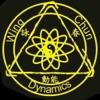 WingChun Kung Fu-咏春拳