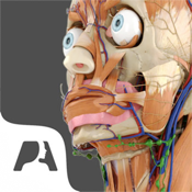 Pocket Anatomy app review
