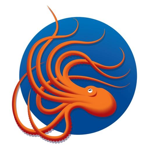OctopusPMI