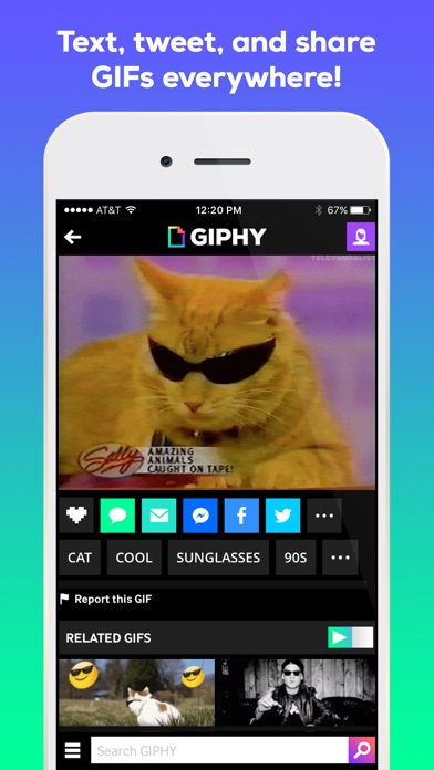 download GIPHY: The GIF Search Engine apps 1
