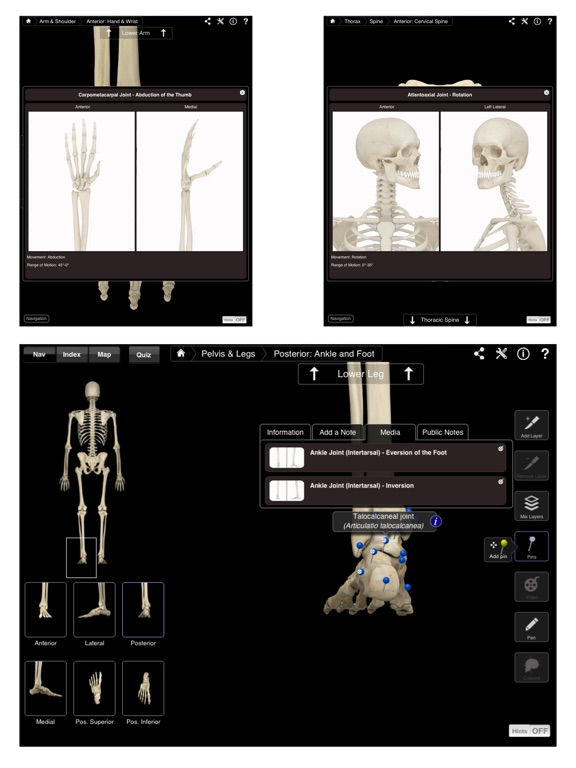 Skeleton System Pro III Screenshots