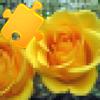 Amazing Photo Puzzles Wiki