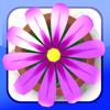 Flower Garden (フラワーガー...