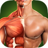 Human Anatomy 3D Pro - Bones And Muscles