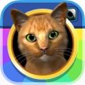 InstaKitty 3D - Virtual Cat Simulator icon