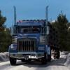 Euro Offroad Truck Simulator 2017 physics