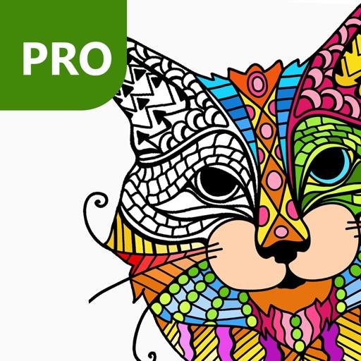 Katten Kleurplaten Printen.Kleurplaten Voor Volwassenen Kat Fy85 Belbin Info
