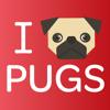 PugMoji - Pug Lovers Emojis and Stickers!