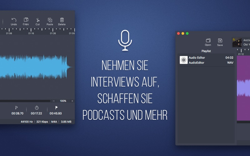Audio Editor - Professionell Bearbeiten Screenshot