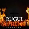 Rugul Aprins București christian music artist search