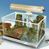 新オヤジリウム:放置育成ゲーム[3D] Wiki