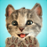 Little Kitten - My Favorite Cat - Fox and Sheep GmbH
