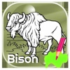 Tap Bison Color Book For Toddle