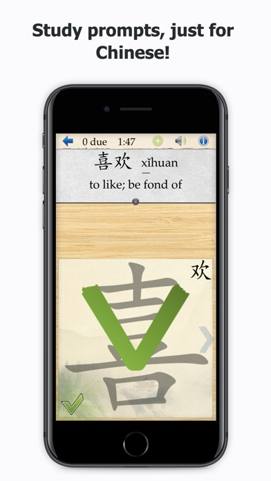 download Skritter Chinese appstore review