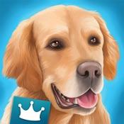 DogHotel Premium- My hotel for labradors