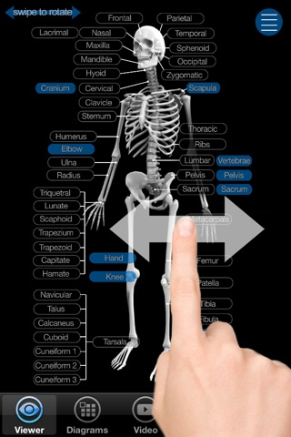 Skeletal Anatomy 3D - Quiz and Reference screenshot 1