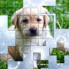 PicPu - Dog Picture Puzzle