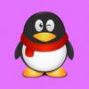 Penguin Flyer Wiki