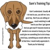 Learning for dog training premium