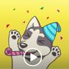 Playful Husky Animated Sticker Wiki