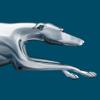 Greyhound (US)