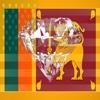 Tamil Phrases Diamond 4K Edition