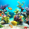 Live Aquarium Wallpapers | Backgrounds