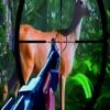 Animal Deer Hunting Today