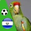 El Perico - Fútbol de Santa Tecla, El Salvador el salvador flag