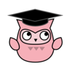 Graduation Cute Owl Wiki