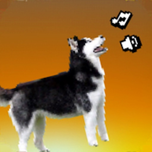 Husky Scream Hero iOS App