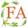 Foundational Aromatherapy