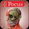 Head and Neck - The Focus Digital Anatomy Atlas