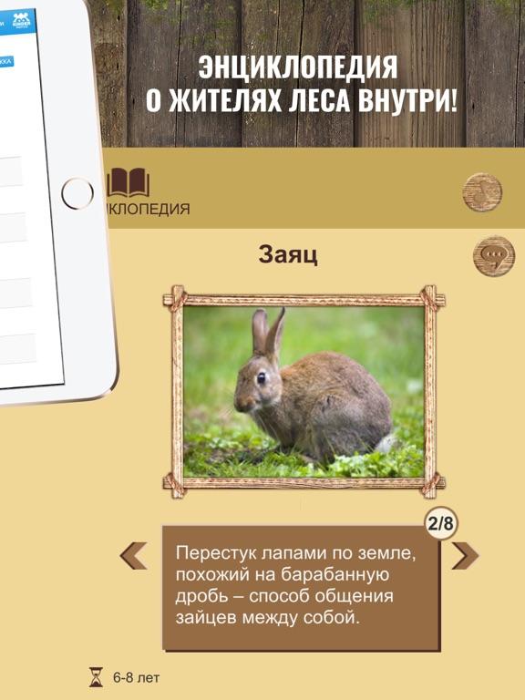 Игра Приключения в лесу: настольная игра для детей