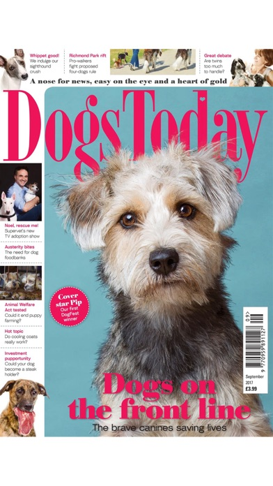 Dogs Today Magazine review screenshots