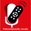 Télécommande Vocale Toutes Box