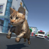 Shahid Ahmed - Kitty Cat Rush 3D Game  artwork