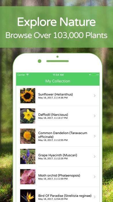 PlantSnap Plant Identification Screenshot 4
