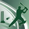 Vaibhav Electronics Pvt Ltd - Cricket Power-Play artwork