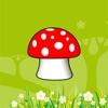 Mushroom 2017
