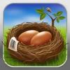 Nest Egg - Inventar
