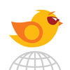 Birdie Travel SIM