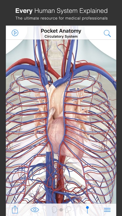 Pocket Anatomy review screenshots