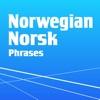 Learn Norwegian Phrasebook Pro